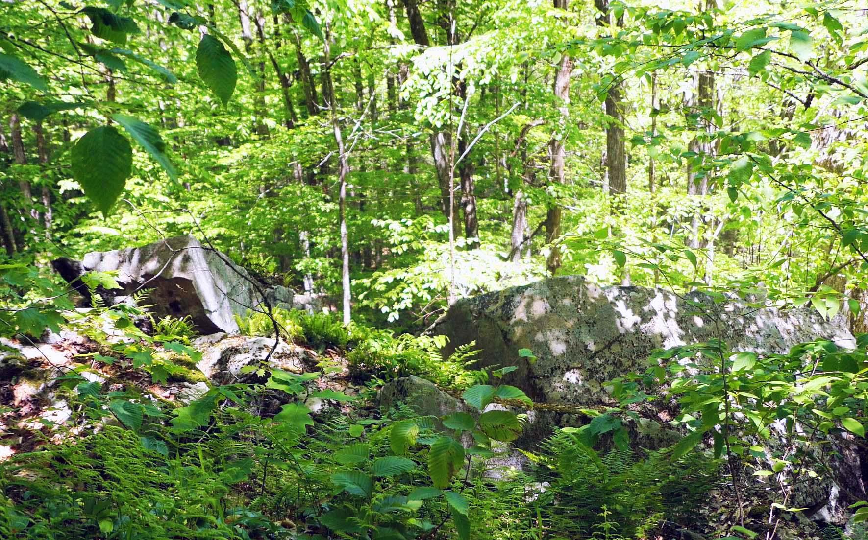 Trails & Maps   Colebrook Land Conservancy